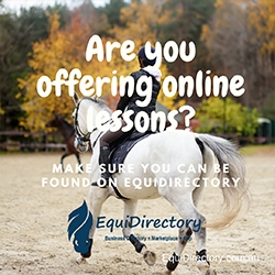Offering online lessons?